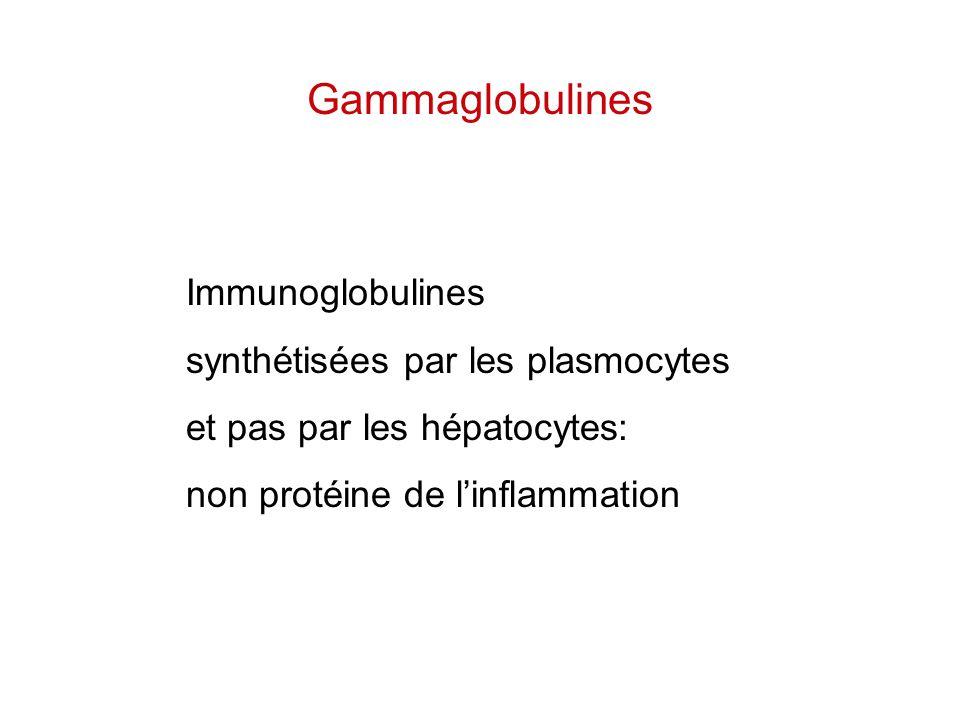 Gammaglobulines Immunoglobulines synthétisées par les plasmocytes et pas par les hépatocytes: non protéine de l'inflammation
