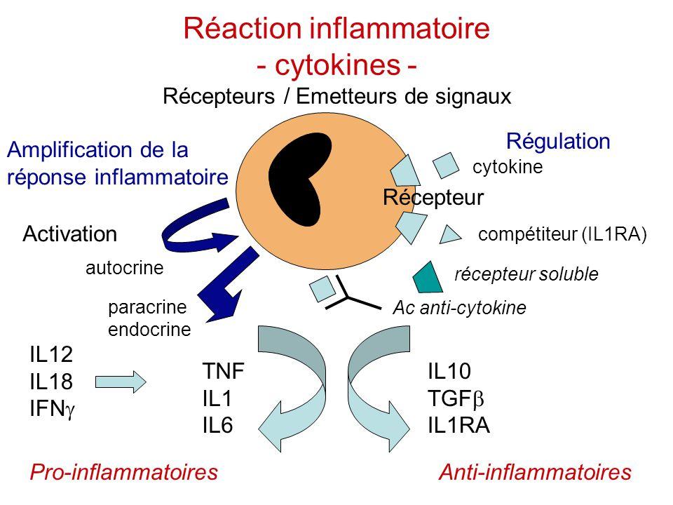 Réaction inflammatoire - cytokines - Récepteurs / Emetteurs de signaux IL12 IL18 IFN  TNF IL1 IL6 Pro-inflammatoires IL10 TGF  IL1RA Anti-inflammato