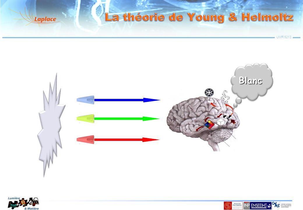 UMR 5213 Transformation Orthotrope: Re-normalisation: Ces « couleurs » n'existent pas « Alychne » (L=0)