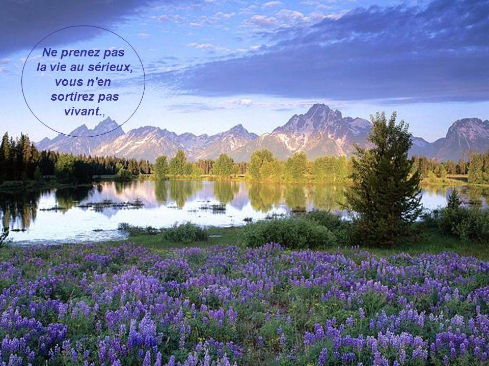 La vie est un jardin de joies, de satisfactions et d'occasions de bonheur. À nous de les cueillir pour en faire un énorme bouquet