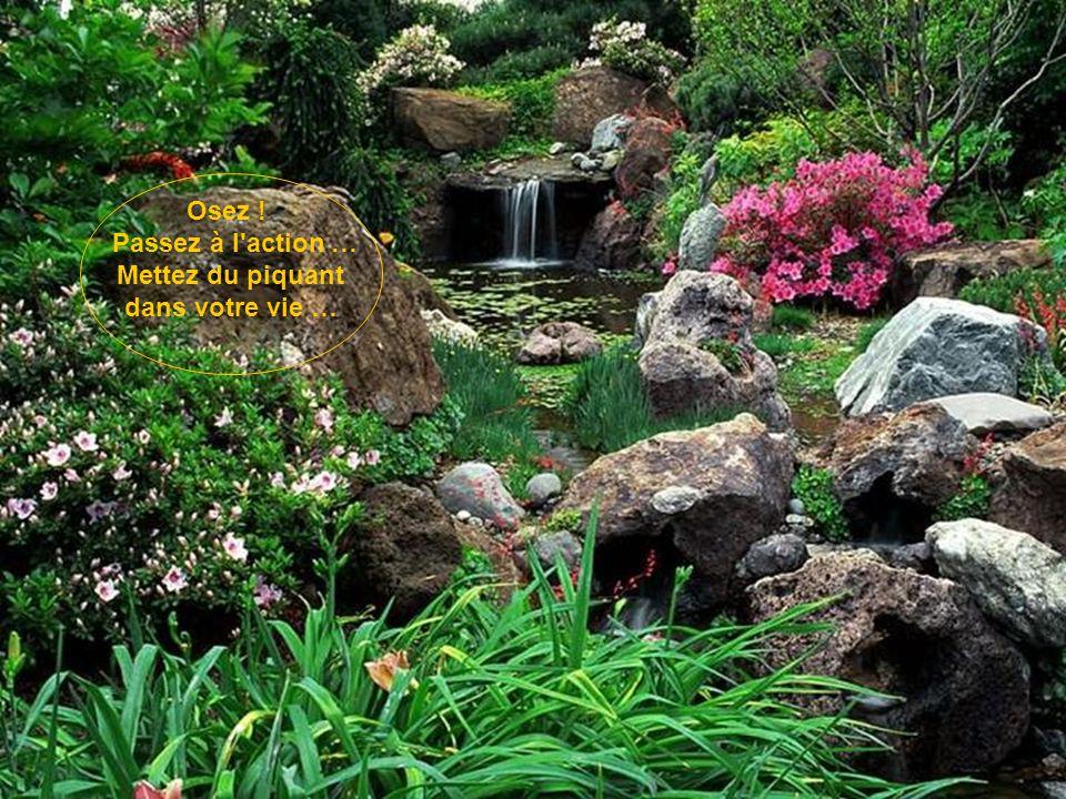Le bonheur est un bouquet de fleurs offert par la vie..