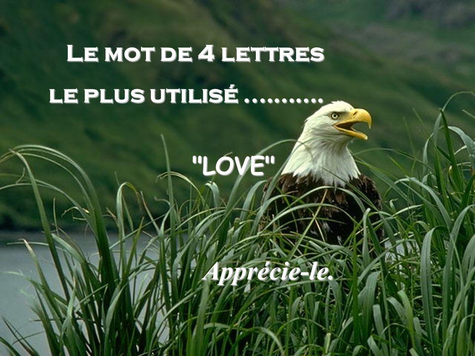 Le mot de 4 lettres le plus utilisé........... LOVE Apprécie-le.