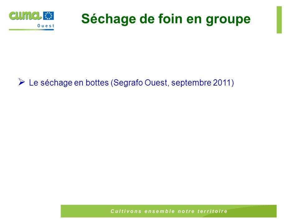  Le séchage en bottes (Segrafo Ouest, septembre 2011) Séchage de foin en groupe