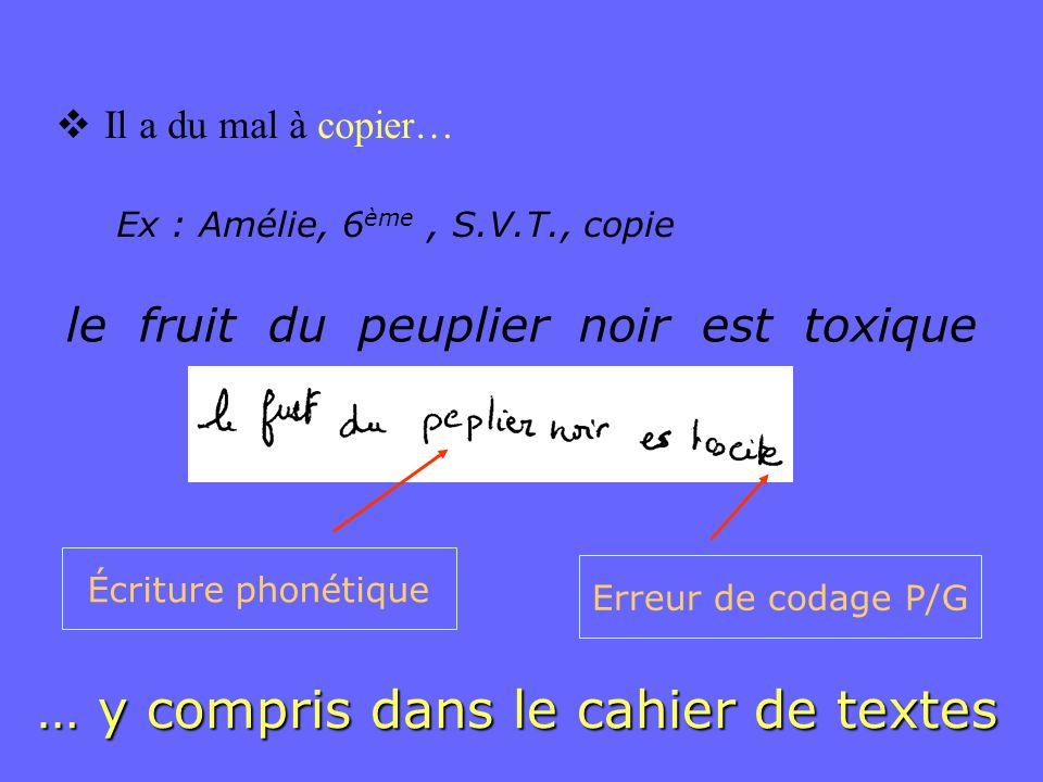  Il a du mal à copier… le fruit du peuplier noir est toxique Ex : Amélie, 6 ème, S.V.T., copie … y compris dans le cahier de textes Erreur de codage