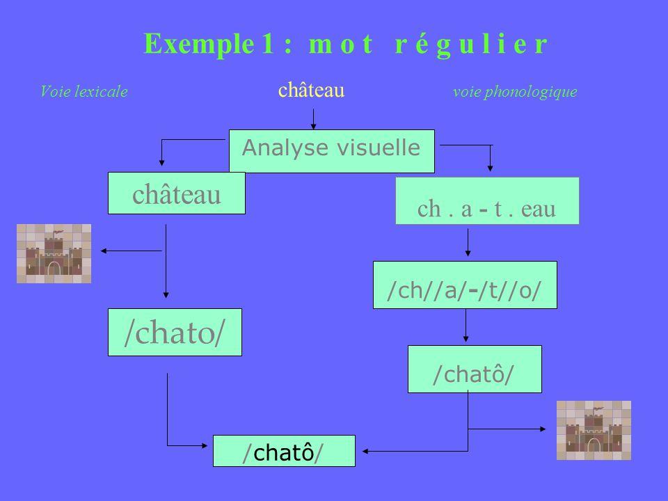 Exemple 1 : m o t r é g u l i e r Voie lexicale château voie phonologique Analyse visuelle château /chato/ /chatô/ ch. a - t. eau /ch//a/-/t//o/ /chat