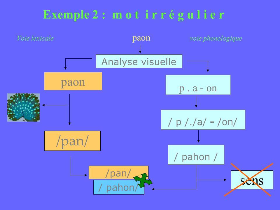 Voie lexicale paon voie phonologique Analyse visuelle Exemple 2 : m o t i r r é g u l i e r paon /pan/ p. a - on / p /./a/ - /on/ / pahon / /pan/ / pa