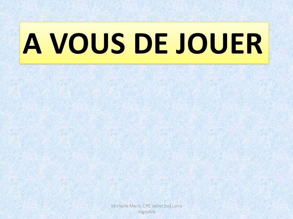 Michelle Merit, CPC Vallet Sud Loire Vignoble Accroître le degré d'organisation des catégories