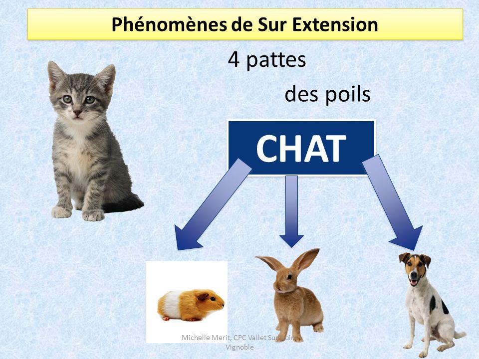 Phénomènes de Sur Extension 4 pattes des poils CHAT CHAT Michelle Merit, CPC Vallet Sud Loire Vignoble