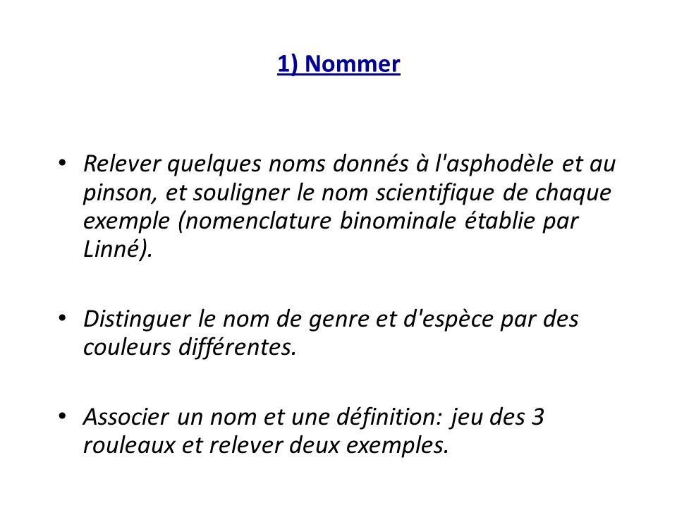 1) Nommer Relever quelques noms donnés à l'asphodèle et au pinson, et souligner le nom scientifique de chaque exemple (nomenclature binominale établie