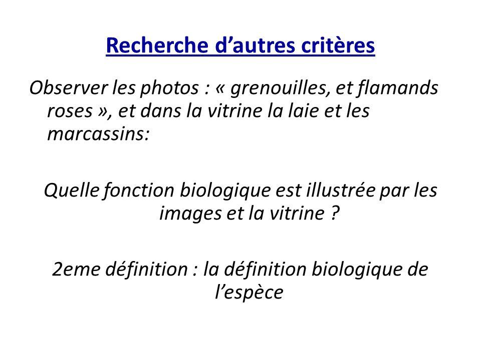 Recherche d'autres critères Observer les photos : « grenouilles, et flamands roses », et dans la vitrine la laie et les marcassins: Quelle fonction bi