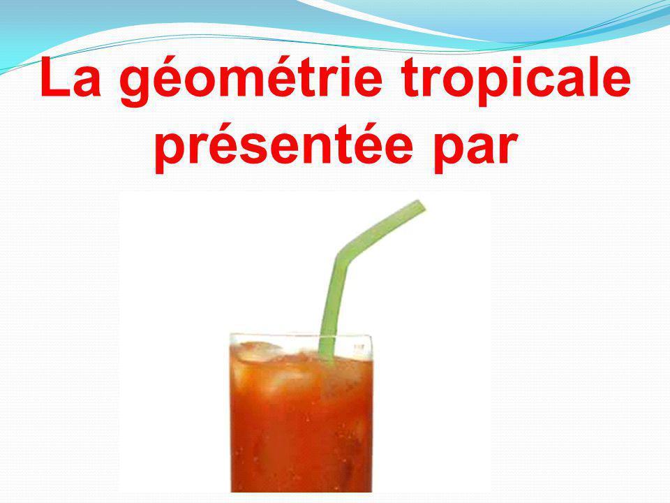 La géométrie tropicale présentée par
