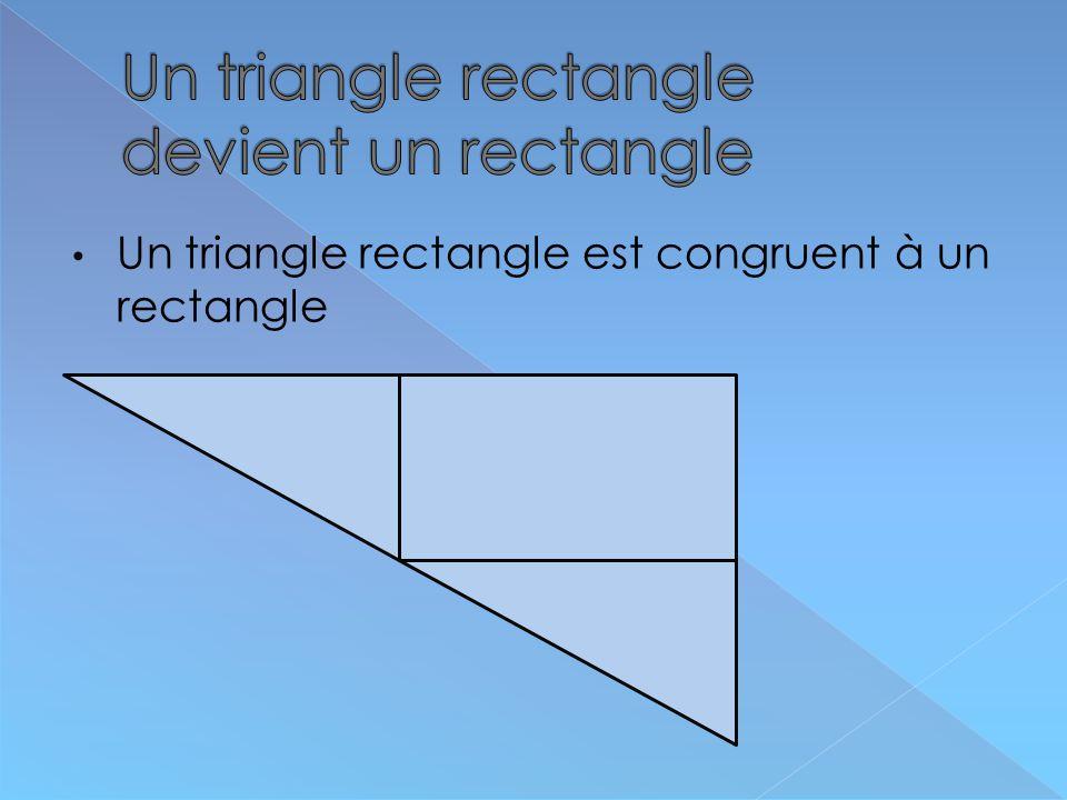 Un triangle rectangle est congruent à un rectangle