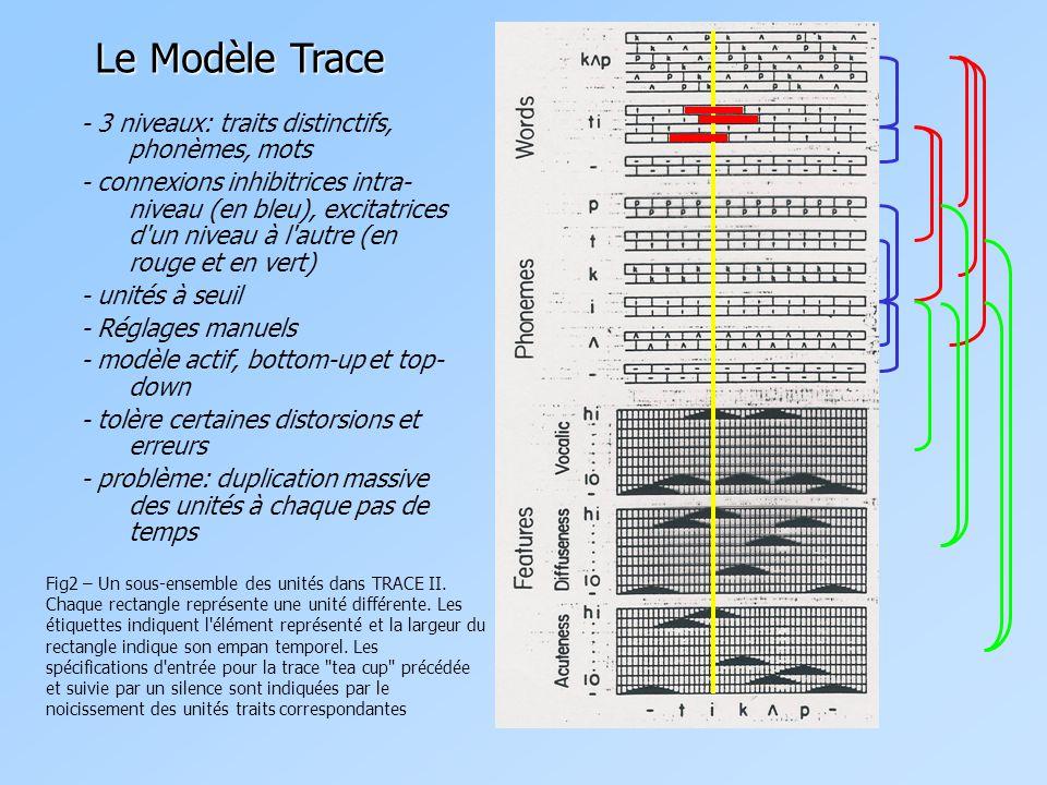- 3 niveaux: traits distinctifs, phonèmes, mots - connexions inhibitrices intra- niveau (en bleu), excitatrices d un niveau à l autre (en rouge et en vert) - unités à seuil - Réglages manuels - modèle actif, bottom-up et top- down - tolère certaines distorsions et erreurs - problème: duplication massive des unités à chaque pas de temps Le Modèle Trace Fig2 – Un sous-ensemble des unités dans TRACE II.