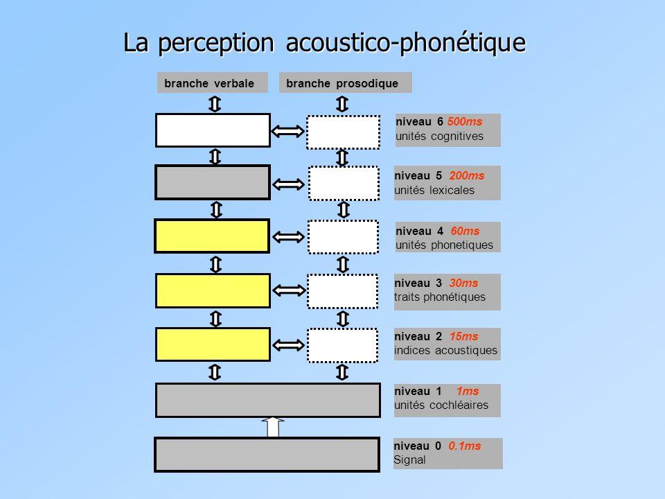 niveau 6 500ms unités cognitives niveau 2 15ms indices acoustiques niveau 1 1ms unités cochléaires niveau 0 0.1ms Signal niveau 3 30ms traits phonétiques niveau 4 60ms unités phonetiques niveau 5 200ms unités lexicales branche verbalebranche prosodique La perception acoustico-phonétique