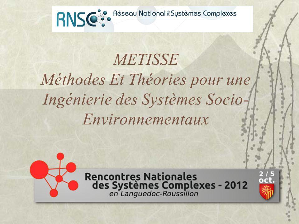 METISSE Méthodes Et Théories pour une Ingénierie des Systèmes Socio- Environnementaux