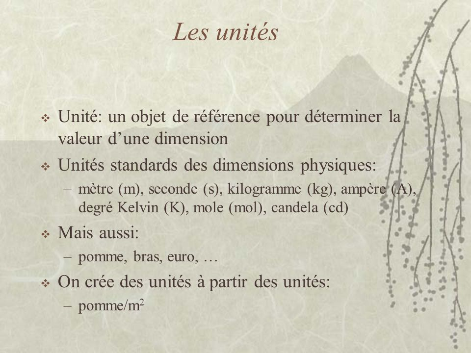 Les unités  Unité: un objet de référence pour déterminer la valeur d'une dimension  Unités standards des dimensions physiques: –mètre (m), seconde (s), kilogramme (kg), ampère (A), degré Kelvin (K), mole (mol), candela (cd)  Mais aussi: –pomme, bras, euro, …  On crée des unités à partir des unités: –pomme/m 2