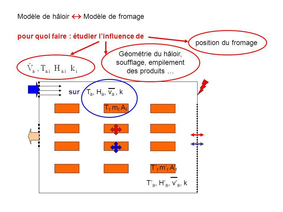 Modèle de hâloir  Modèle de fromage T a, H a, v a, k T' a, H' a, v' a, k T f m f A f T' f m' f A' f pour quoi faire : étudier l'influence de Géométri