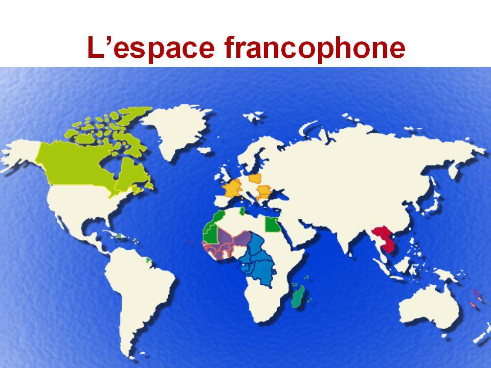 L'INTIF : Institut francophone des nouvelles technologies de l'information et de la formation Une des directions de l'Agence intergouvernementale de la Francophonie Organe subsidiaire de l'Agence, qui a succédé en 1999 à l'Ecole internationale Situé à Bordeaux, France Abrite le Centre international francophone de Documentation et d'information de l'AIF http://cifdi.francophonie.org http://cifdi.francophonie.org