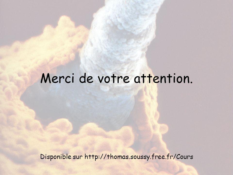 Merci de votre attention. Disponible sur http://thomas.soussy.free.fr/Cours