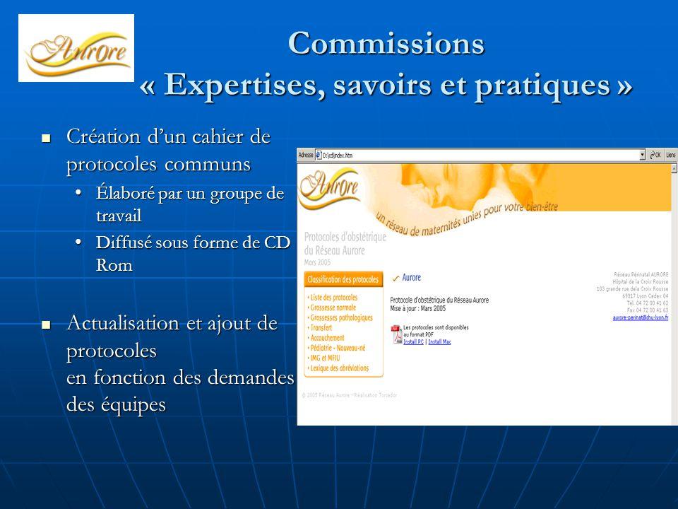 Commissions « Expertises, savoirs et pratiques » Création d'un cahier de protocoles communs Création d'un cahier de protocoles communs Élaboré par un