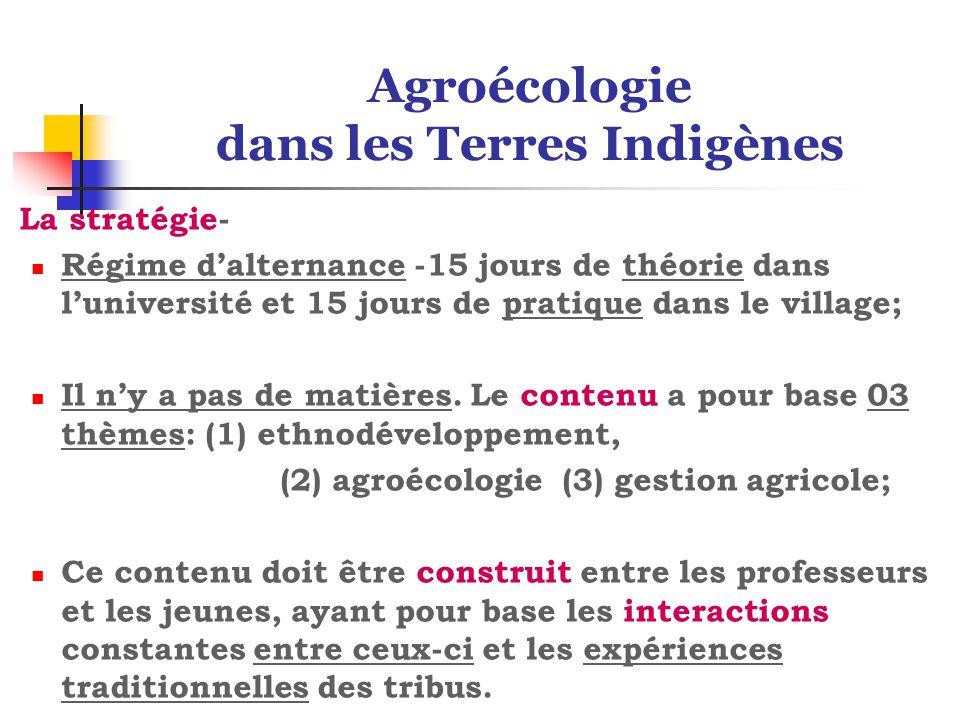Agroécologie dans les Terres Indigènes La stratégie- Régime d'alternance -15 jours de théorie dans l'université et 15 jours de pratique dans le village; Il n'y a pas de matières.