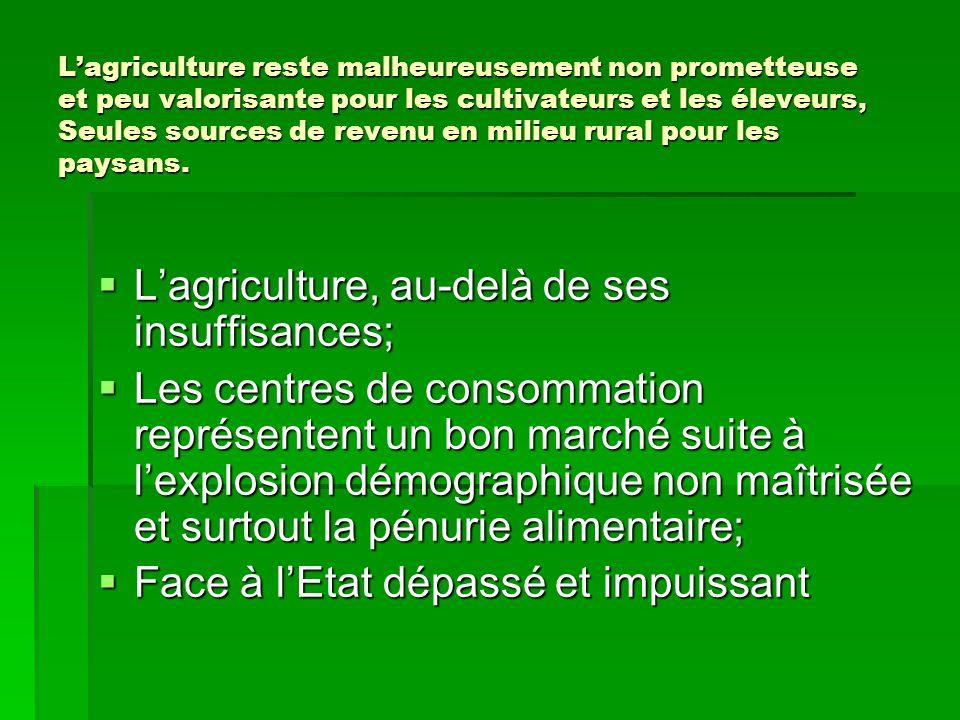L'agriculture reste malheureusement non prometteuse et peu valorisante pour les cultivateurs et les éleveurs, Seules sources de revenu en milieu rural