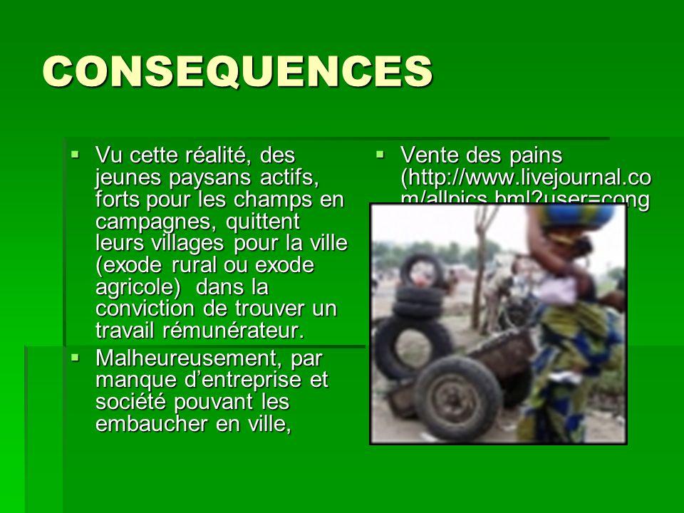 CONSEQUENCES  Vu cette réalité, des jeunes paysans actifs, forts pour les champs en campagnes, quittent leurs villages pour la ville (exode rural ou