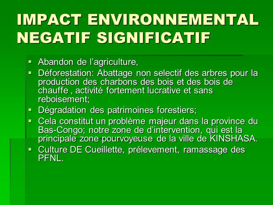 IMPACT ENVIRONNEMENTAL NEGATIF SIGNIFICATIF  Abandon de l'agriculture,  Déforestation: Abattage non selectif des arbres pour la production des charb