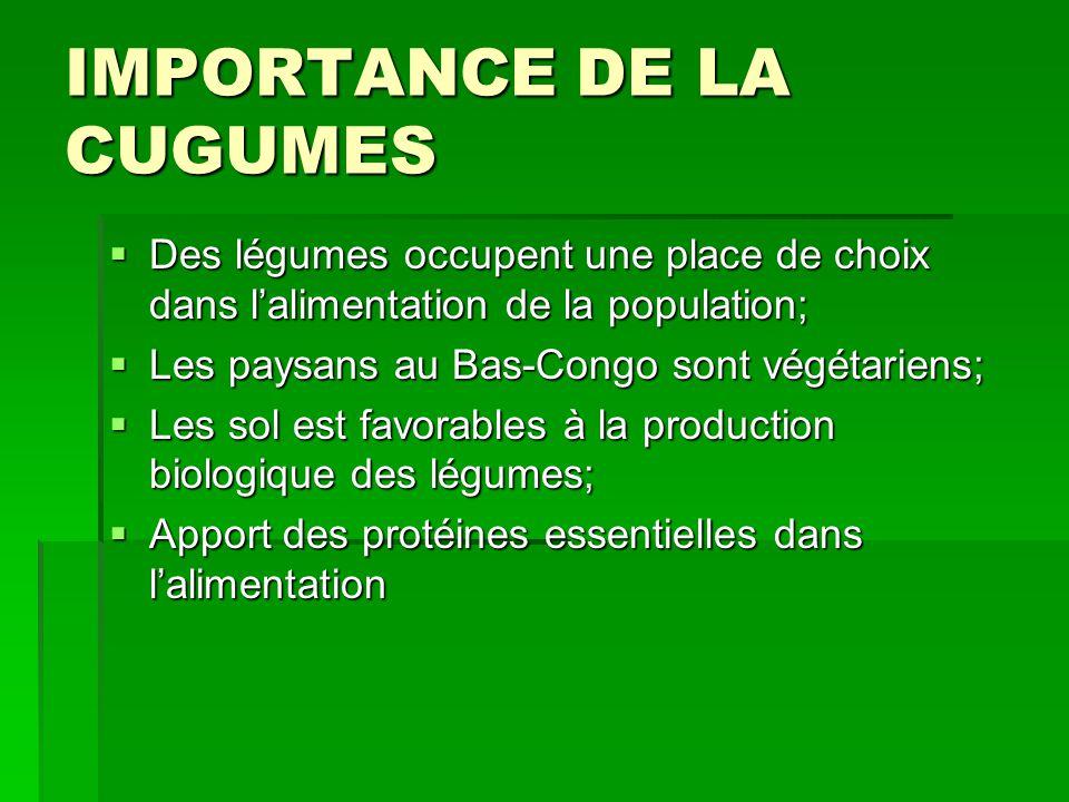 IMPORTANCE DE LA CUGUMES  Des légumes occupent une place de choix dans l'alimentation de la population;  Les paysans au Bas-Congo sont végétariens;