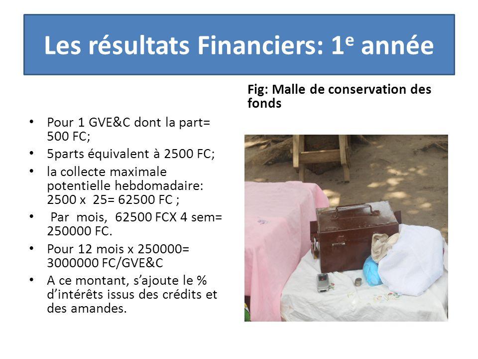 Les résultats Financiers: 1 e année Pour 1 GVE&C dont la part= 500 FC; 5parts équivalent à 2500 FC; la collecte maximale potentielle hebdomadaire: 2500 x 25= 62500 FC ; Par mois, 62500 FCX 4 sem= 250000 FC.