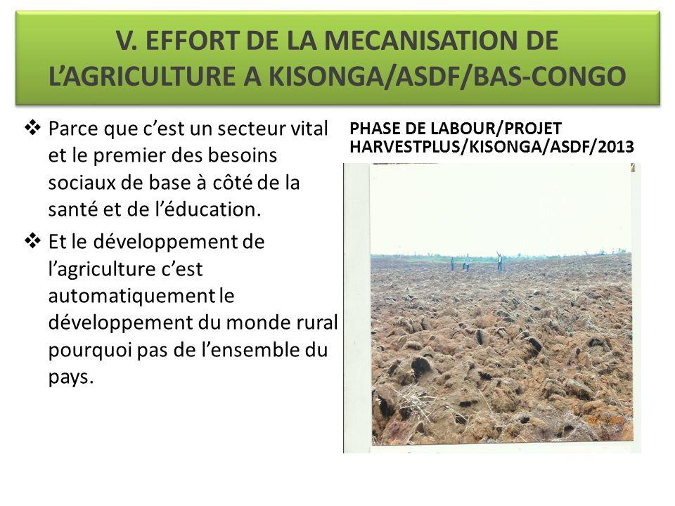 V. EFFORT DE LA MECANISATION DE L'AGRICULTURE A KISONGA/ASDF/BAS-CONGO  Parce que c'est un secteur vital et le premier des besoins sociaux de base à