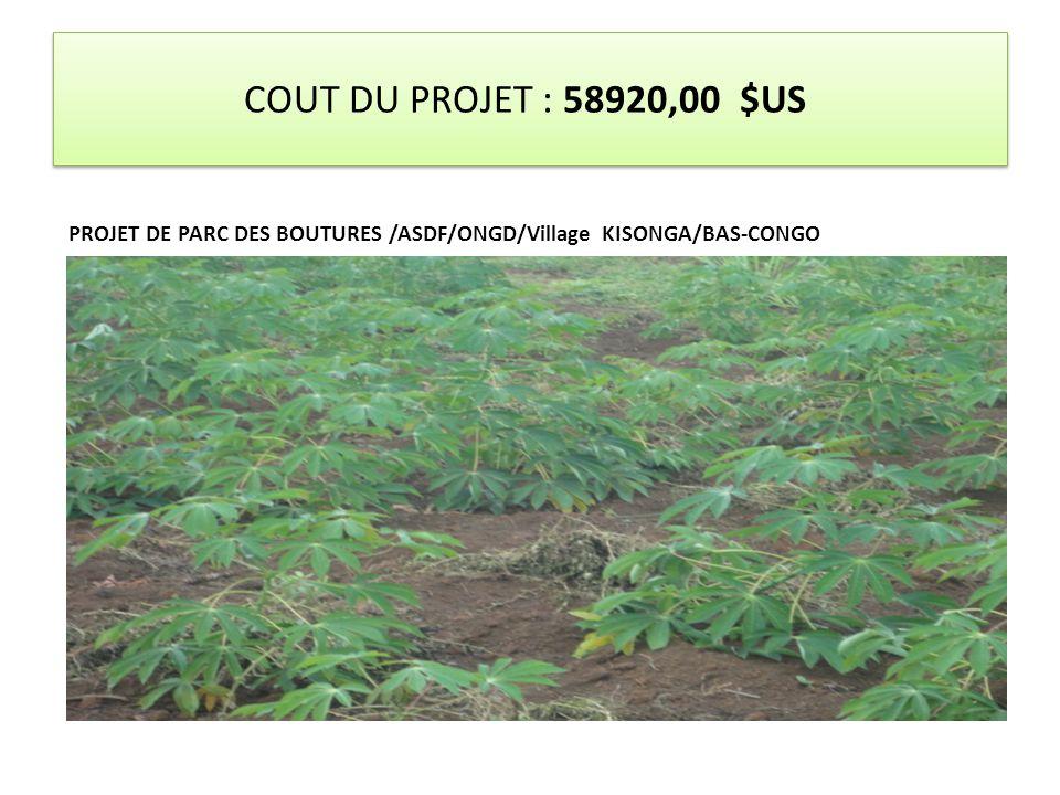 COUT DU PROJET : 58920,00 $US PROJET DE PARC DES BOUTURES /ASDF/ONGD/Village KISONGA/BAS-CONGO