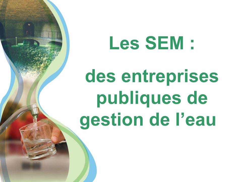 Les SEM : des entreprises publiques de gestion de l'eau
