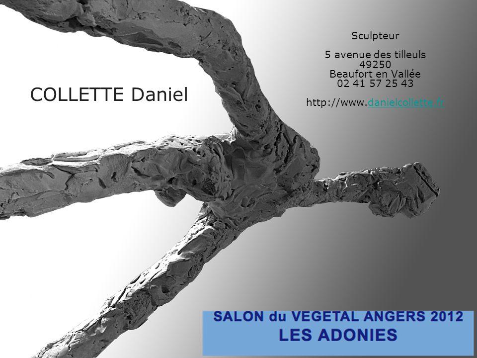COLLETTE Daniel Sculpteur 5 avenue des tilleuls 49250 Beaufort en Vallée 02 41 57 25 43 http://www.danielcollette.frdanielcollette.fr