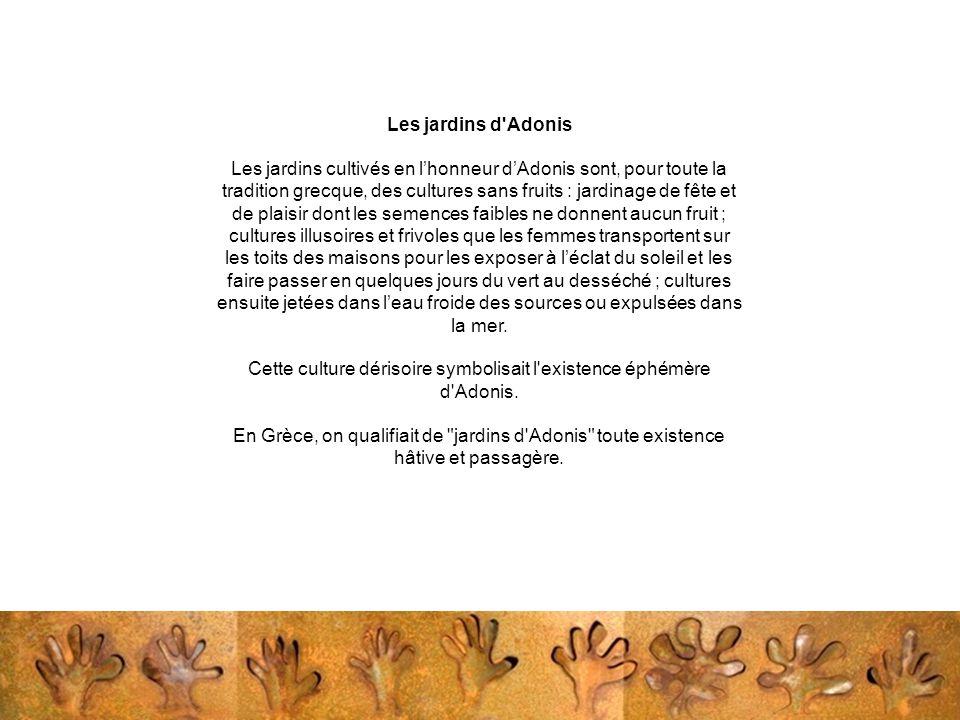 Les jardins d'Adonis Les jardins cultivés en l'honneur d'Adonis sont, pour toute la tradition grecque, des cultures sans fruits : jardinage de fête et