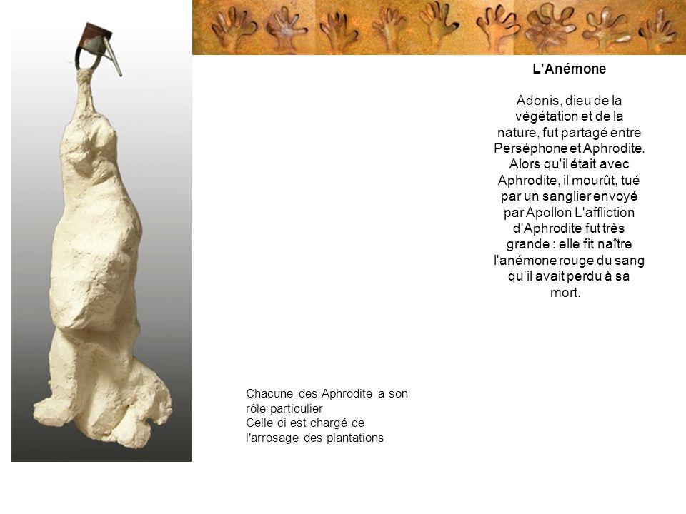 Chacune des Aphrodite a son rôle particulier Celle ci est chargé de l'arrosage des plantations L'Anémone Adonis, dieu de la végétation et de la nature