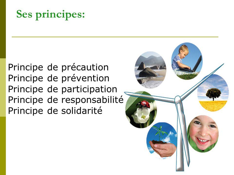 6 Les 3 piliers: (maîtrise des risques, utilisation minimale des ressources équitable, …) (s adapter à l évolution des attentes) ( rapport coût/efficacité, création de richesse) sociale économique environnementale équitable vivable durable viable