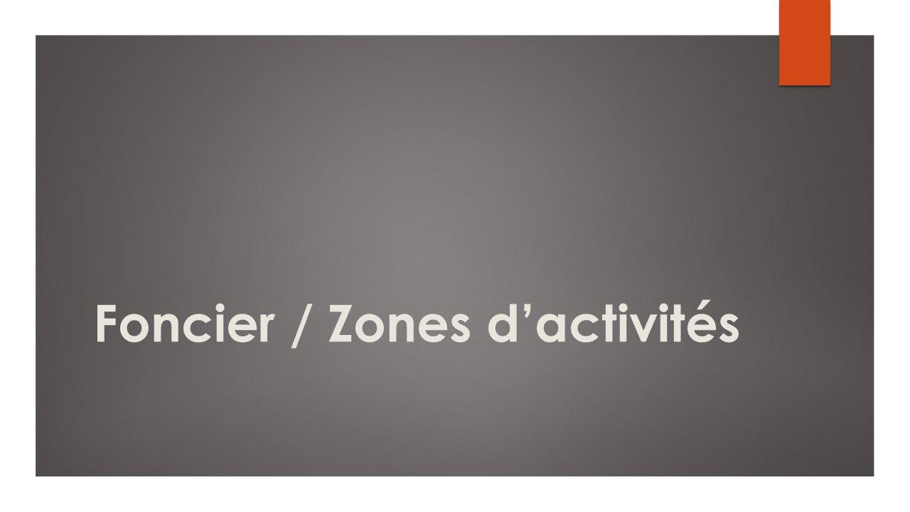 Foncier / Zones d'activités