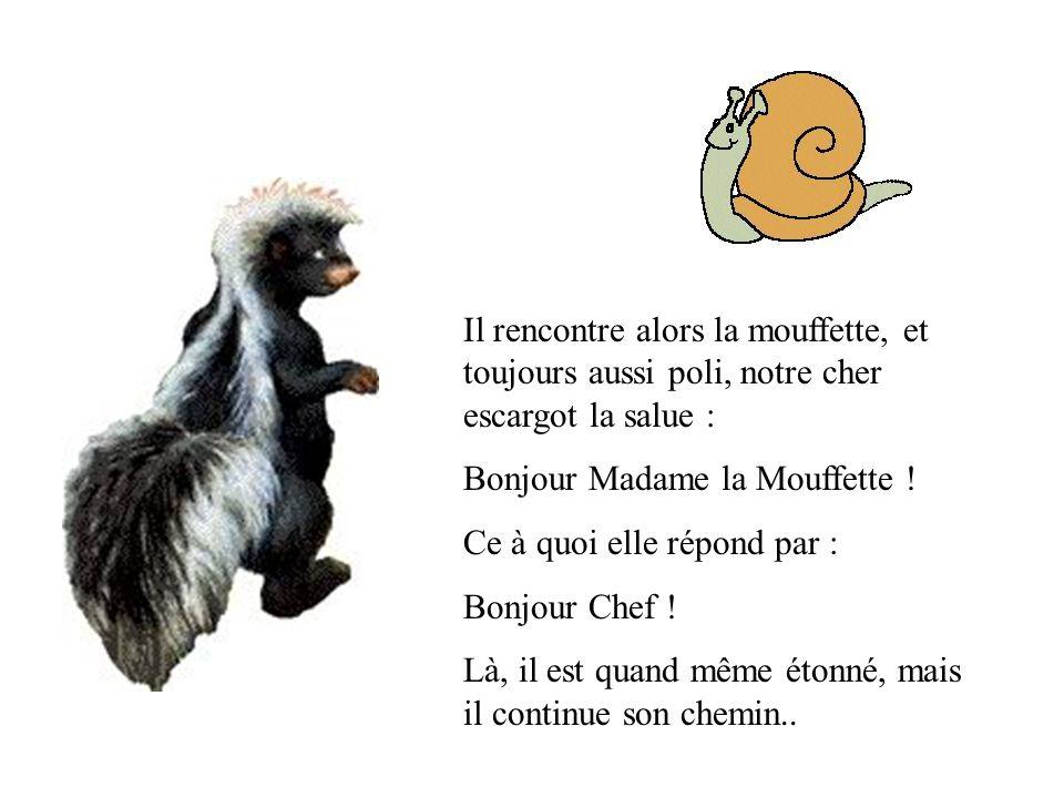 Il rencontre alors la mouffette, et toujours aussi poli, notre cher escargot la salue : Bonjour Madame la Mouffette ! Ce à quoi elle répond par : Bonj