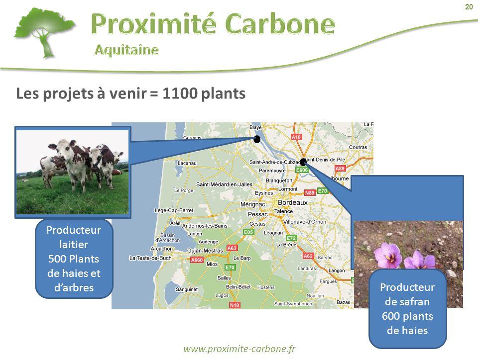 20 www.proximite-carbone.fr Producteur laitier 500 Plants de haies et d'arbres Producteur de safran 600 plants de haies Les projets à venir = 1100 pla