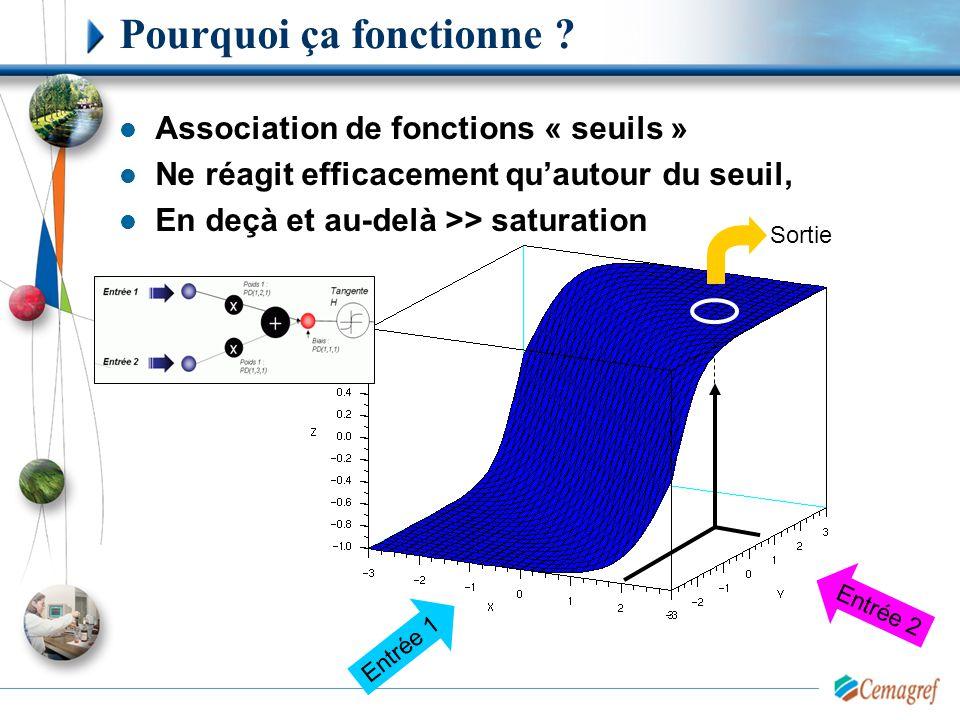 Pourquoi ça fonctionne ? Association de fonctions « seuils » Ne réagit efficacement qu'autour du seuil, En deçà et au-delà >> saturation Entrée 1 Entr