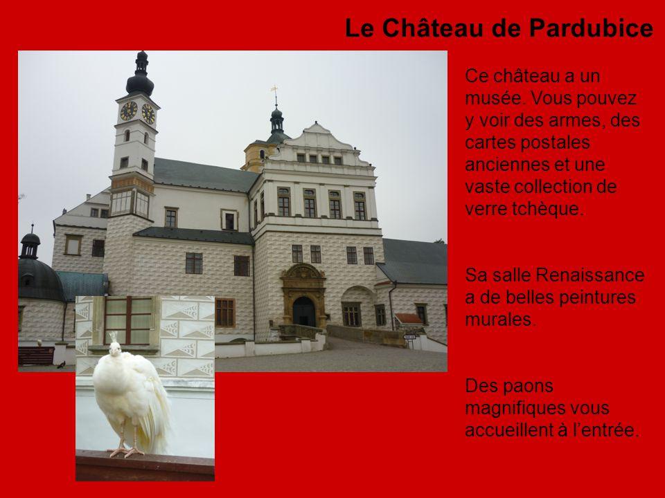 Le Château de Pardubice Ce château a un musée.