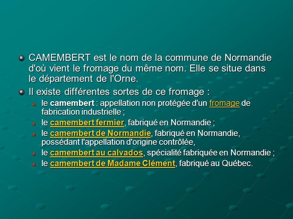 CAMEMBERT est le nom de la commune de Normandie d'où vient le fromage du même nom. Elle se situe dans le département de l'Orne. Il existe différentes