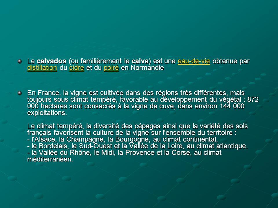 Le calvados (ou familièrement le calva) est une eau-de-vie obtenue par distillation du cidre et du poiré en Normandie eau-de-vie distillationcidrepoir
