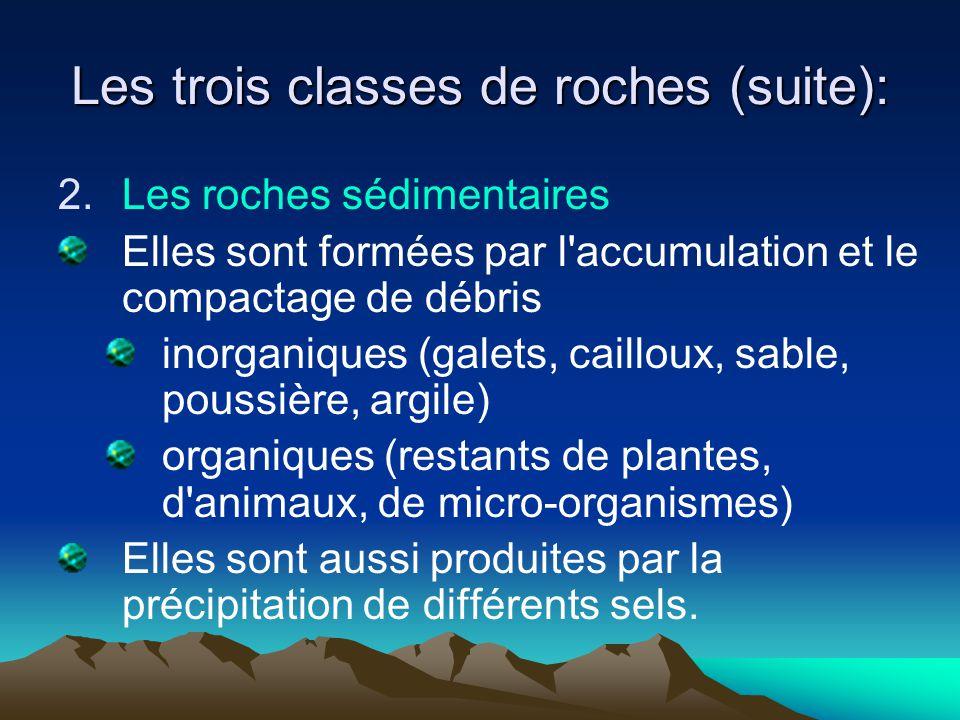 Les trois classes de roches (suite): 2.Les roches sédimentaires Elles sont formées par l'accumulation et le compactage de débris inorganiques (galets,