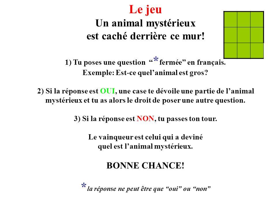 """Le jeu Un animal mystérieux est caché derrière ce mur! 1) Tu poses une question """" * fermée"""" en français. Exemple: Est-ce quel'animal est gros? 2) Si l"""