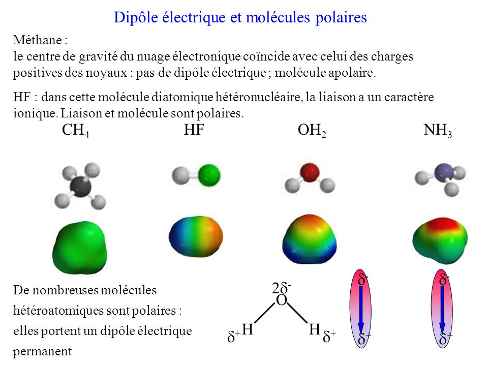 Dipôle électrique et molécules polaires CH 4 HF OH 2 NH 3 De nombreuses molécules hétéroatomiques sont polaires : elles portent un dipôle électrique permanent O H 2  -  + -+-+ Méthane : le centre de gravité du nuage électronique coïncide avec celui des charges positives des noyaux : pas de dipôle électrique ; molécule apolaire.