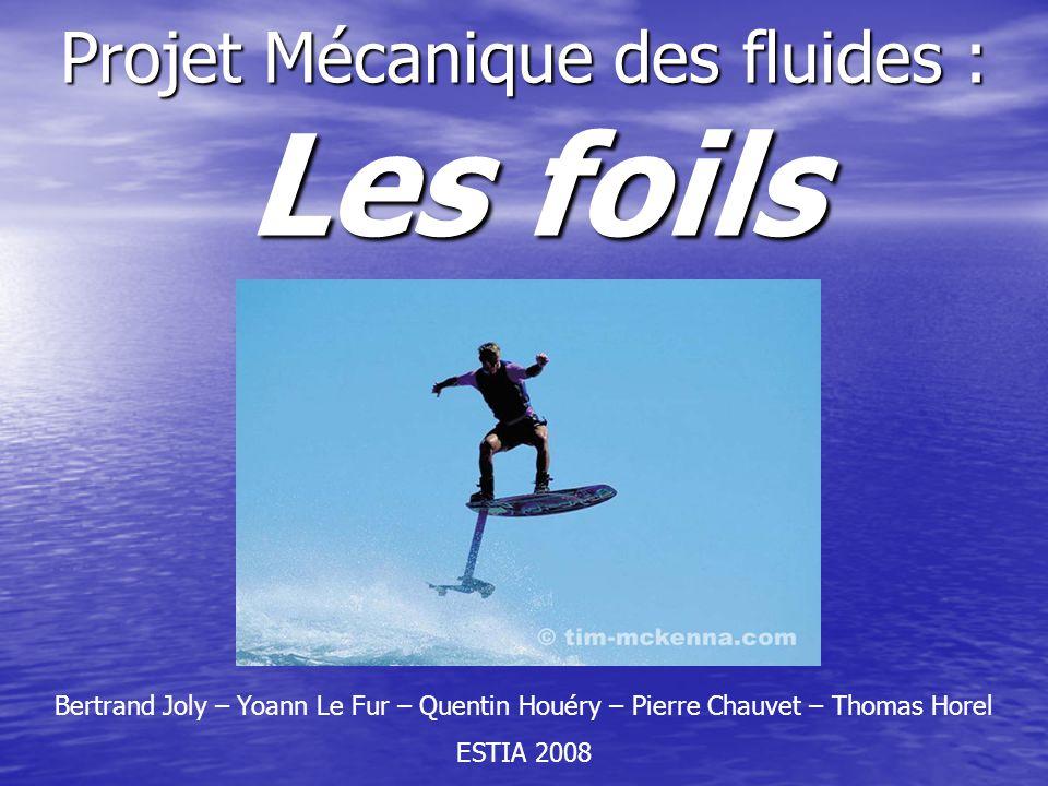 Projet Mécanique des fluides : Les foils Bertrand Joly – Yoann Le Fur – Quentin Houéry – Pierre Chauvet – Thomas Horel ESTIA 2008