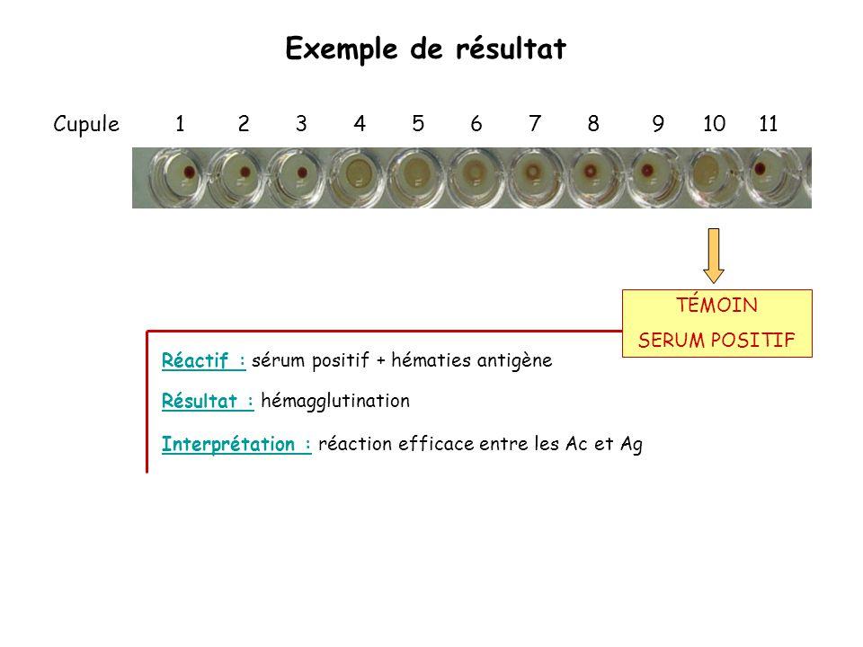 Exemple de résultat Cupule 1 2 3 4 5 6 7 8 9 10 11 Réactif : sérum positif + hématies antigène Interprétation : réaction efficace entre les Ac et Ag R