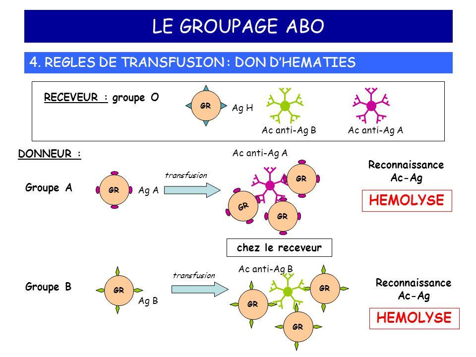 LE GROUPAGE ABO 4. REGLES DE TRANSFUSION : DON D'HEMATIES DONNEUR : Reconnaissance Ac-Ag HEMOLYSE RECEVEUR : groupe O Ac anti-Ag B GR Ag H Ac anti-Ag